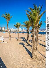 Benidorm, méditerranéen,  Alicante,  poniente, plage, espagne