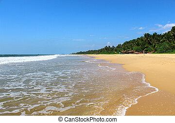 Bentota Beach and Indian Ocean
