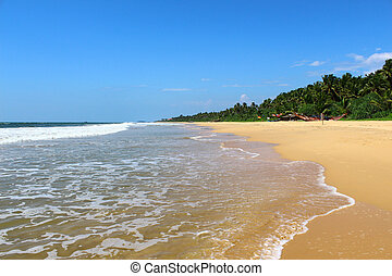 Bentota Beach and Indian Ocean