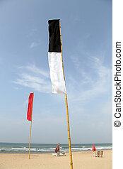 Bentota beach - Flags and table on the Bentota beach, Sri...