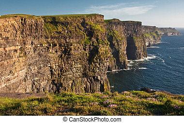 berühmt, klippen, moher, irland, fangen