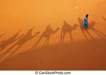 Berber man in Saharan desert. - Berber man walking in the...