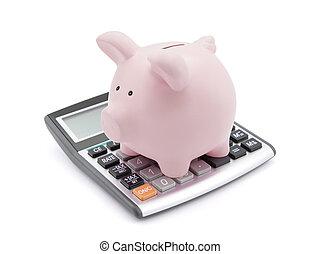 berechnend, taschenrechner, hintergrund., schweinchen, savings., weißes, aus, bank