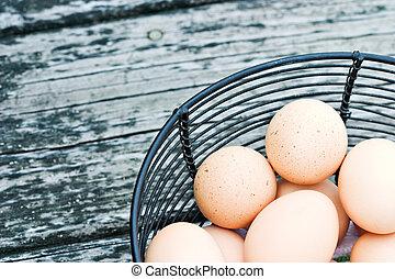 bereich, eier, frei