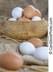 bereich, frisch, eier, frei