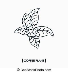 berendezés, kávécserje, egyenes, ikon