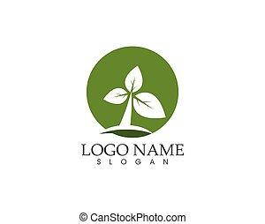 berendezés, levél növényen, természet, ábra, vektor, zöld