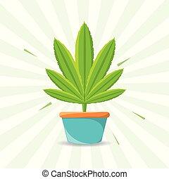 berendezés, marihuana, szeret, béke