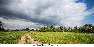 berg biking, vrouwen, paardrijden, op, fiets, in, zomer, landscape