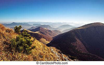 berg, heuvels, nevelig, landschap, herfst, slowakije, aanzicht
