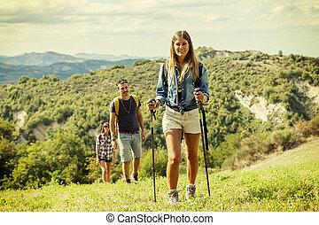berg, hikers, groep, enkel dossier