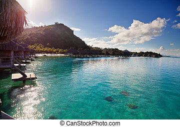 berg, island., hut, zon, ascends, dak, oceaan, tropische ,...
