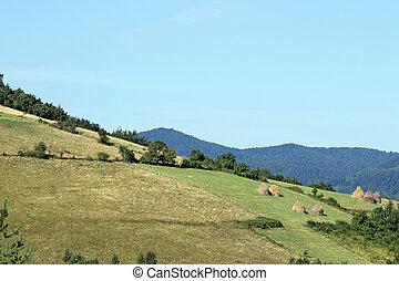 berg, landelijk landschap, west, servië