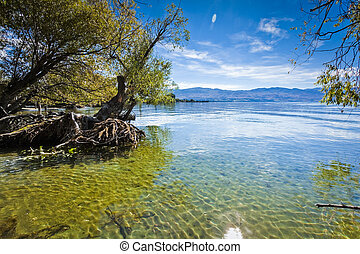 berg meer, in, zomer