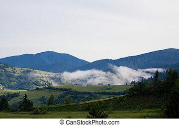 berg, mist, bergen