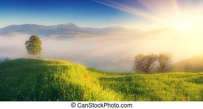 berg, op, mist, morgen, dorp