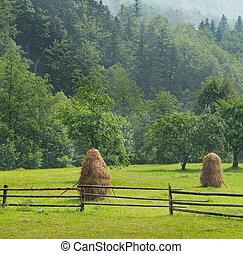 berg vallei, haystacks