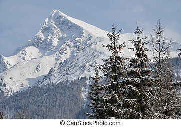 berg, verschneiter