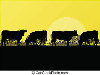 berg, vleeskoe, natuur, platteland, illustratie, kudde,...