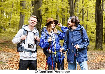 berg, vrienden, groep, wandelende