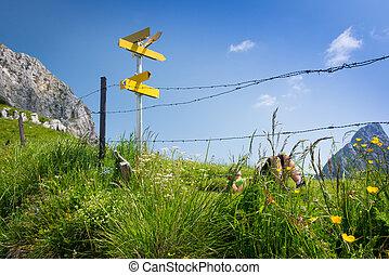 berg, wandelende, relaxen, groene, meisje, weide
