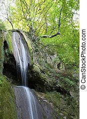 berg, waterval, lente, natuur scène