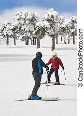 berg, winter, leute, slope., wald, fahren schi weiß, landschaft.