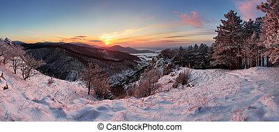 berg, winterlandschaft, wald