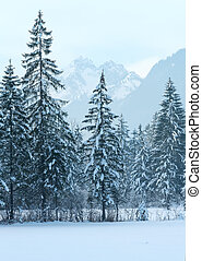 berg, winterlandschap