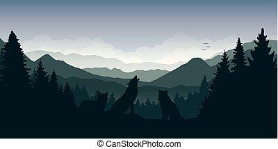 berg, wolf, wald, grüne landschaft, satz