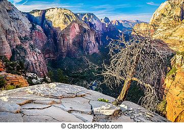 berg, zion, landschaftlich, nationalpark, tal, ansicht