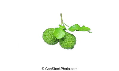 Bergamot fruit on isolated white