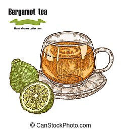 Bergamot fruits and cup of tea isolated on white background. Hand drawn art. Vector illustration