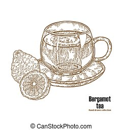 Bergamot fruits and cup of tea isolated on white background. Hand drawn art. Vector illustration engraved
