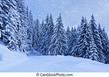 berge, österreich, fahren ski zuflucht, zell-am-see