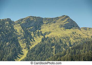 berge, grün, wälder, felder, wiesen