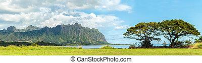 berge, kaneohe, koolau, hawaii, bucht, windwärts, oahu, über...