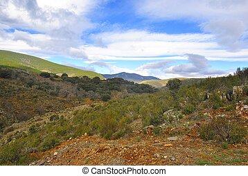 berge, landschaftsbild