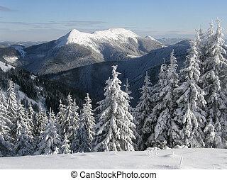 bergen, carpathians, winter