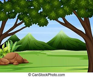 bergen, hoog, illustratie, bos, groene, door