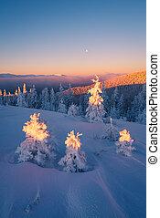 bergen, kerstmis, landscape