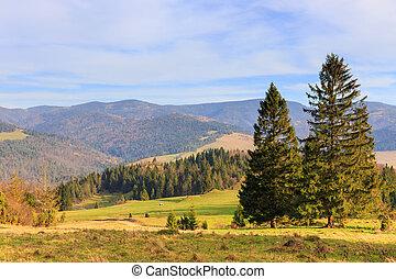bergen, landscape, bomen