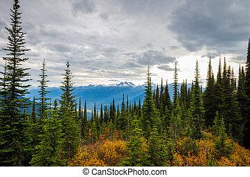 bergen, landscape, canadees