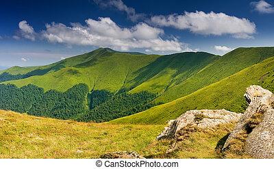 bergen, landscape