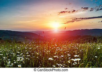 bergen, morgen, opkomende zon