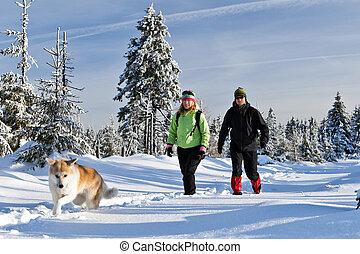 bergen, paar, winter, wandelende, dog
