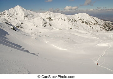 bergen, retezat, winter