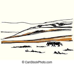 bergen, sketch., heuvel, achtergrond, steegjes, bos