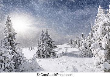 bergen, snowstorm
