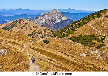 bergen, trekker, slowaak, trekking, steegjes, fatra, mala